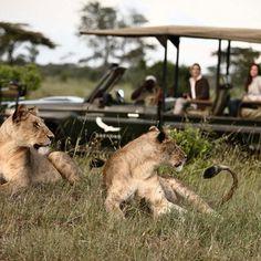 Photos, andBeyond Sandibe Okavango Safari Lodge - Botswana