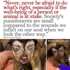 """""""Never, never be afraid to do what's right, especially if the well-being of a person or animal is at stake."""" Speak up, do something, be a voice for the voiceless."""