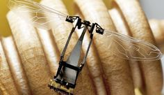 Scientists Develop Flying Robobees to Pollinate Flowers as Bee Populations Decline