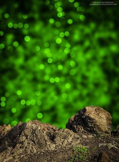 Top 50 Wallpaper And Background Images For Mobile And Desktop. These wallpapers and background images will make your screen even more beaut. Photo Background Images Hd, Background Wallpaper For Photoshop, Blur Image Background, Photography Studio Background, Studio Background Images, Editing Background, Amai, The Help, Facebook Status