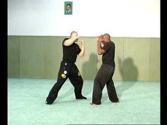 Ultimate Martial Arts - BA 225.wmv