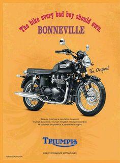Yes they should - a Triumph Bonneville. Triumph Cafe Racer, Triumph Motorbikes, Triumph Bonneville T100, Triumph Scrambler, Cool Motorcycles, Triumph Motorcycles, Vintage Motorcycles, Triumph T120, Bike Poster