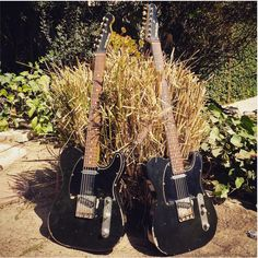 Pistolero Guitars Guitars, It Works, Guitar, Nailed It