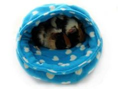 Sewing Animals Guinea pig snuggle pod free sewing tutorial finished pattern small animals - Free sewing tutorial - Step by step photo instructions showing you how to make your own hooded fleece basket for guinea pigs, rabbits and other small animals Guinea Pig House, Baby Guinea Pigs, Pet Pigs, Diy Guinea Pig Toys, Guinea Pig Clothes, Pet Clothes, Bunny Beds, Skinny Pig, Guinea Pig Bedding