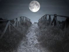 Reminds me of my friend Corey Oliver. I used to always send him postcards of the moon.