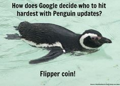 How Does Google Penguin Decide Who to Hit? #penguinupdates #googlepenguinupdates #SEO