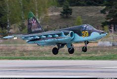 Sukhoi Su-25BM aircraft picture