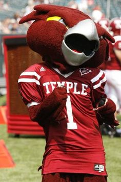 Temple University Owls - costumed mascot - Hooter the Owl