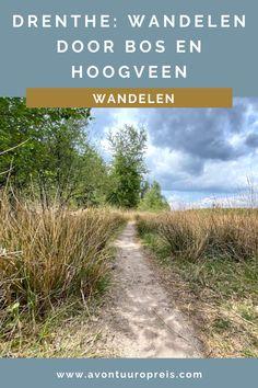 Met een rugzak op mijn rug wandel ik door de bossen van Drenthe. Om mij heen niets dan fluitende vogels, hoogveen en imposante bomen. Dan doemt midden in het bos een klein houten huisje op. Hier ga ik overnachten in een Cabiner: een natuurhuisje in Drenthe waar je zelf je water op moet pompen en hout moet hakken voor de houtkachel. Midden in de natuur, helemaal off grid!