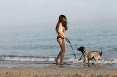El perro de agua español, el amigo que te hará la vida más feliz