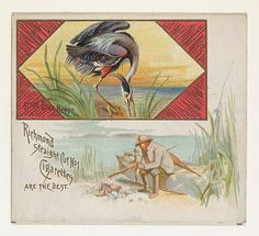 Great Blue Heron, from the Game Birds series (N40) for Allen & Ginter Cigarettes