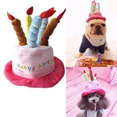 http://amzn.to/2prYjMx  catyou Liebenswürdig, Katze Hund Pet Happy Birthday Party Hat mit Kuchen & 5farbenfrohe Kerzen Design, Cosplay Kostüm Zubehör mit Kopfbedeckungen für Katzen, kleine bis mittelgroße Hunde http://amzn.to/2prYjMx