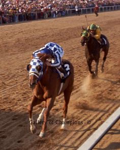 Secretariat In 1973 Preakness Defeating Sham - Framed & Unframed Photo Beautiful Horse Pictures, Beautiful Horses, Barrel Racing Horses, Horse Racing, Standardbred Racing, Disney Horses, Animals And Pets, Cute Animals, Thoroughbred Horse