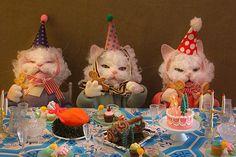 Cute Little Animals, Baby Animals, Funny Animals, Mood Pics, Cat Art, Cute Cats, Cute Babies, Kittens, Happy Birthday