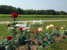 Château des Charmes #Niagara #vignobles #vin #Wine #Vineyards