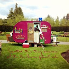 Hot pink camper with birds, how fun and I don't even like camping, but might reconsider if I had this :-) Little Campers, Cool Campers, Retro Campers, Camper Trailers, Happy Campers, Vintage Campers, Retro Caravan, Gypsy Caravan, Vintage Caravans