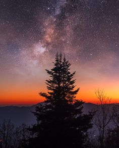 """This is my first """"creative"""" image. Creative meaning it's a composite of two shots - the lone tree in the foreground, and the milky way in…"""