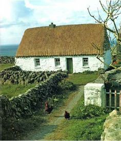Irish Cottage with Hens Looks like where my Grandpaw lived. His house which is still in County Cork . Irish Cottage with Hens Looks like where my Grandpaw lived. His house which is still in County Cork . Irish Cottage, Cozy Cottage, Cottage Homes, Cottages By The Sea, Cabins And Cottages, Unique Cottages, Stone Cottages, Thatched Roof, Ireland Travel