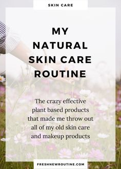 My Natural Skin Care Routine - Fresh New Routine #OilySkinRemedy