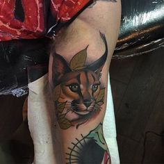 15 Dignified Lynx Tattoos