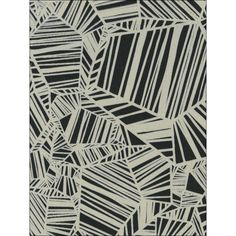 Pyrite Velvet Flocked Wallpaper in Ebony and White from the Plush... (€270) ❤ liked on Polyvore featuring home, home decor, wallpaper, wallpaper samples, black velvet wallpaper, geometric pattern wallpaper, black flock wallpaper, textured wall covering and black home decor