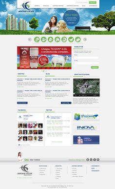 Website 2013