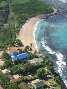 Blue Tile Beach House | Paia,                            SWIM on Thanksgiving before dinner!!!!