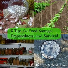 8 Tips for Food Storage, Preparedness, and Survival www.melissaknorris.com Pioneering Today