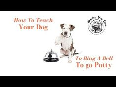 Train Your Dog To Ring A Bell To Go Potty - WonderDogGear.org