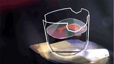 Fish in a broken glass Animation Reference, Art Reference, Cute Gifs, Animated Gifs, Cool Animations, Pretty Art, Aesthetic Anime, Amazing Art, Awesome