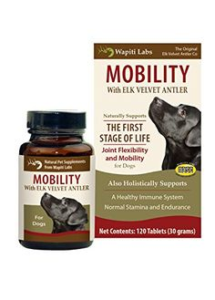 Wapiti Labs Dog Mobility 120 Count Tablet >>> Check out the image by visiting the link.Note:It is affiliate link to Amazon.