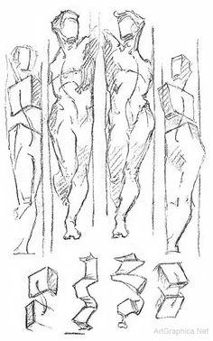 constructing the human form, art and anatomy, advanced art studies