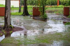 Backyard Drainage, Landscape Drainage, Drainage Ditch, Patio Drainage Ideas, Flood Areas, How To Kill Grass, Drainage Solutions, Up House, Lawn Care