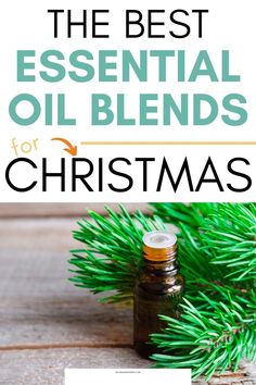 You will these Christmas essential oil blends. Find out how to easily use them in your home to help you get into the Holiday Spirit! You will love these essential oil blends that smell like gingerbread, candy canes, Christmas trees, and more! You can also print the essential oil recipe card so that you always have the best Christmas essential oil blend recipes on hand! Plant Therapy Essential Oils, Essential Oil Supplies, Best Essential Oils, Essential Oil Blends, Christmas On A Budget, Christmas Gifts For Kids, Christmas Trees, Best Diffuser, Spiced Cider