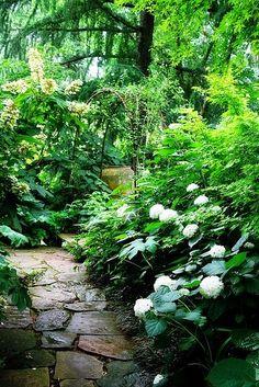 Chelsea Flower Show | Backyards Click