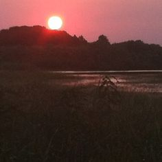 Sunset on the Florida marsh, Lake Winder.