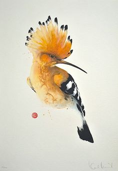 Hoopoe by Karl Mårtens - Litografier « Edition Vulfovitch