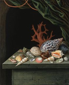 "clawmarks: ""Still life with shells and coral, resting on a stone ledge - manner of Antoine Berjon - possibly - via Sotheby's "" Seashell Painting, Shell Collection, All Nature, Still Life Art, Shell Art, Vanitas, Old Master, Natural History, Decoration"