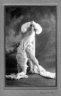Erte Art Deco Museum of Fashion and Theatre Designs (718) 531-7830