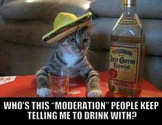Remember To Drink With Moderation