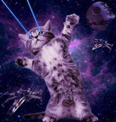 GALAXY CAAAATTTT, SHOOTING LAZERS FROM HIS EYES. FLOATING IN SPAAACCCEEEEE