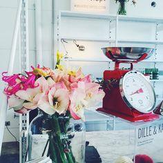 Flowers tabewarebreakfastpretty locations gooodmorning!  #pressdays #nightingale #communication #pr #agency #brussels #location #firma