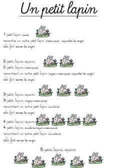 Un petit lapin (image only)