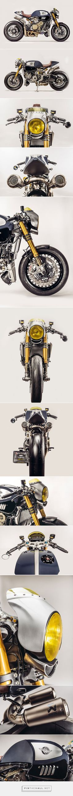 'The Blue Shark' Ducati Panigale R Cafe Racer - Ducati Zentralschweiz & Parts World