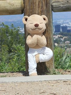 Meet the Adorable Teddy Bear That's Helping Kids Learn About Yoga http://www.people.com/article/meddy-teddy-helps-kids-learn-yoga-meditation