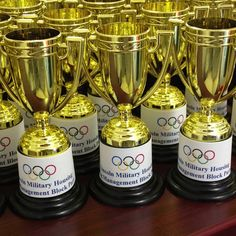 Team USA Flag Day Trophies. Miniature children favors for Olympic themed block party