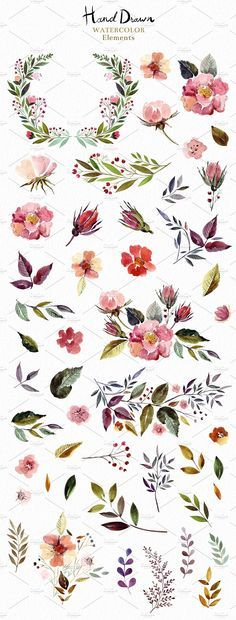 Big Watercolor Bundle by MoleskoStudio on /creativemarket/