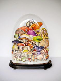Lyndie Dourthe's mushroom assemblage displayed in a glass dome. Notice the poisonous one in the composition? What an eye-catching piece of art!