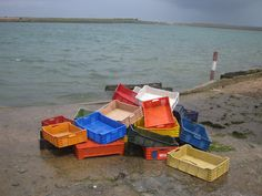 Oyster farming in western Morocco. I love the colors on the plastic baskets and the rough sea!
