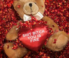 Show your boo how much you really care by giving her the thuggish romantic teddy bear. Raised on the streets, this teddy bear gets straight to the point as the...